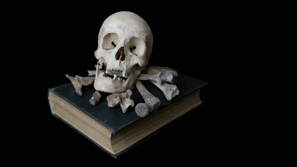 Išnarstyti po kauliuką Kaulų kolekcionierius